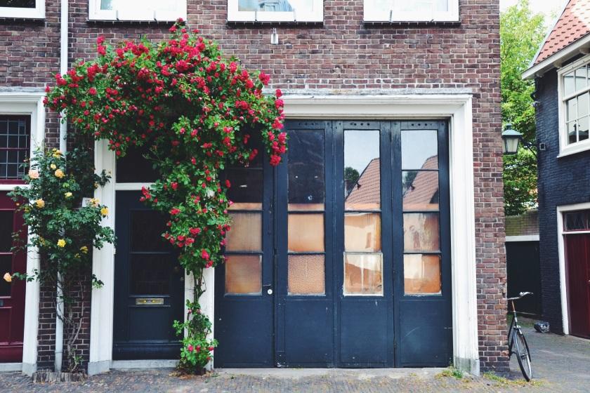 © Janine Juna Grafe - Haarlem, NL