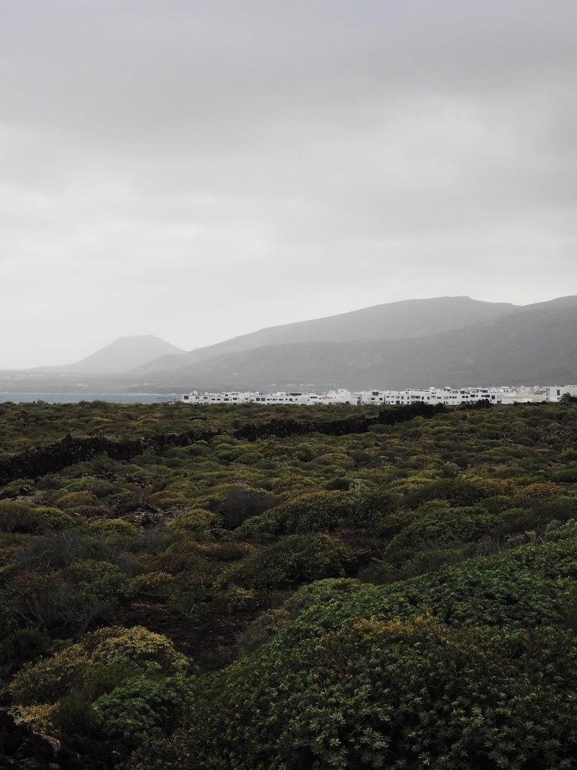 Lanzarote © Janine Juna Grafe
